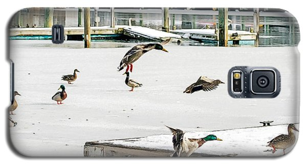 Galaxy S5 Case featuring the photograph Mallards In Motion by Constantine Gregory