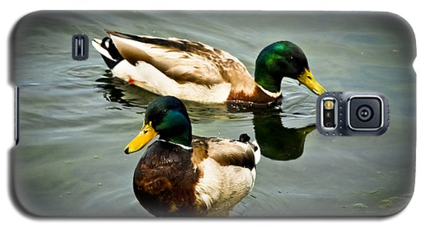 Mallards On Mendota Galaxy S5 Case