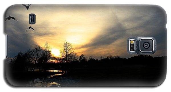Mallards Silhouette At Sunset Galaxy S5 Case