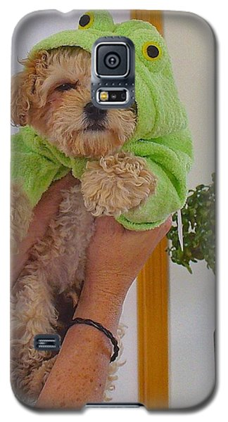 Galaxy S5 Case featuring the photograph Malti-poo Frog A True Mongrel by Brenda Pressnall