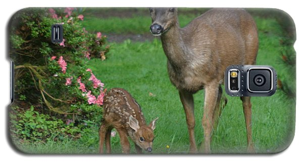 Mama Deer And Baby Bambi Galaxy S5 Case by Kym Backland