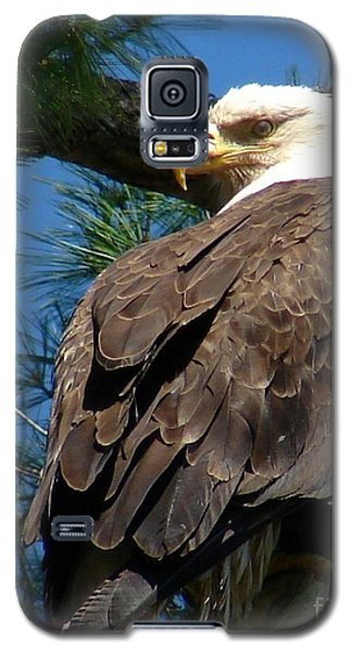 Mama Eagle Watching Galaxy S5 Case
