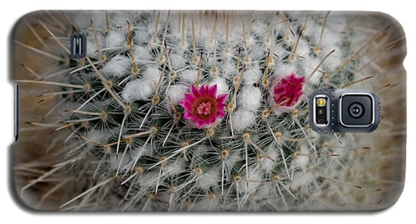 Galaxy S5 Case featuring the photograph Mammillaria Geminispina by Scott Lyons