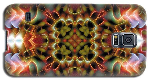 Mandala 120 Galaxy S5 Case by Terry Reynoldson