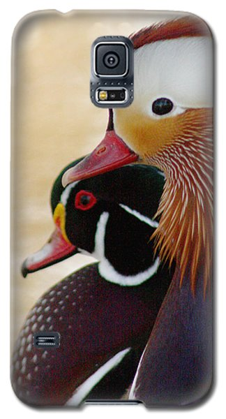 Galaxy S5 Case featuring the photograph Mandarin Duck And Wood Duck by Bob and Jan Shriner