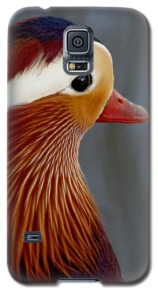 Galaxy S5 Case featuring the photograph Mandarin Duck by Bob and Jan Shriner