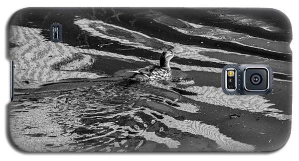 Mandarin Duck Bw - Leif Sohlman Galaxy S5 Case by Leif Sohlman