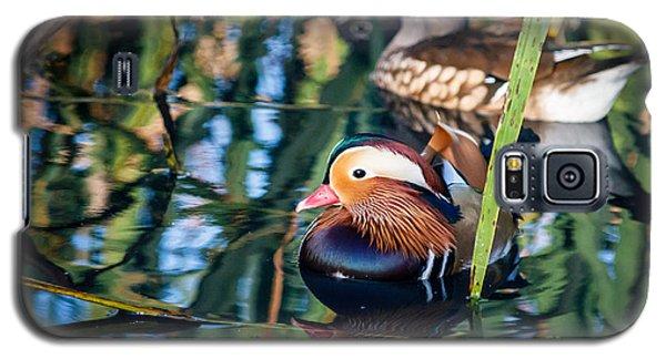 Mandarin Duck Reflections Galaxy S5 Case by Peta Thames