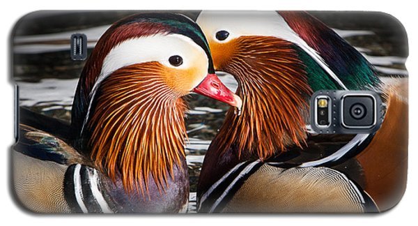 Mandarin Lovers Galaxy S5 Case