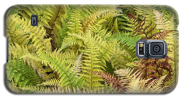 Mane Fern Galaxy S5 Case