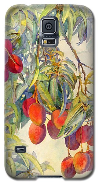 Mangoes In The Evening Light Galaxy S5 Case by Dorothy Boyer