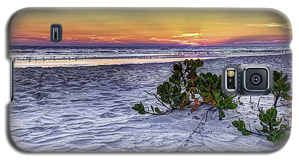 Mangrove On The Beach Galaxy S5 Case by Marvin Spates