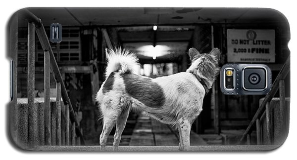Galaxy S5 Case featuring the photograph Man's Best Friend by Dean Harte