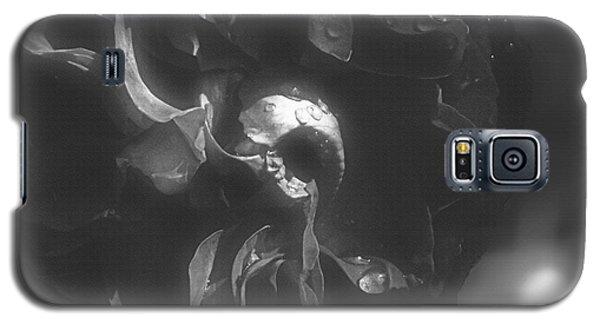 Mansfield Park Monochrome Galaxy S5 Case by Cassandra Buckley