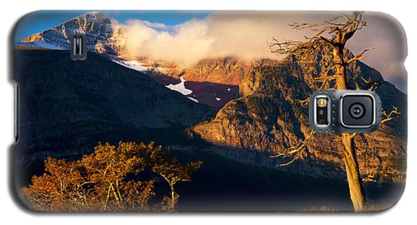 Galaxy S5 Case featuring the photograph Many Glacier Tree by Aaron Whittemore