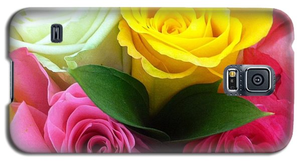 Galaxy S5 Case featuring the photograph Many Roses by Alohi Fujimoto