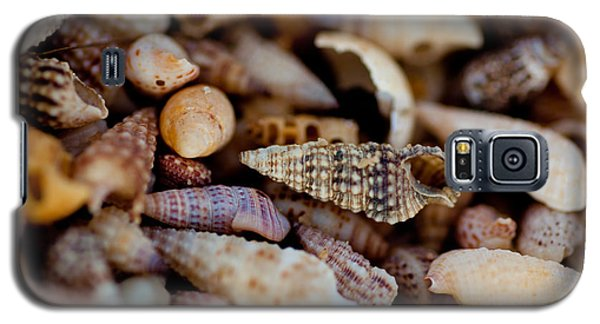 Galaxy S5 Case featuring the photograph Many Shells by Carole Hinding