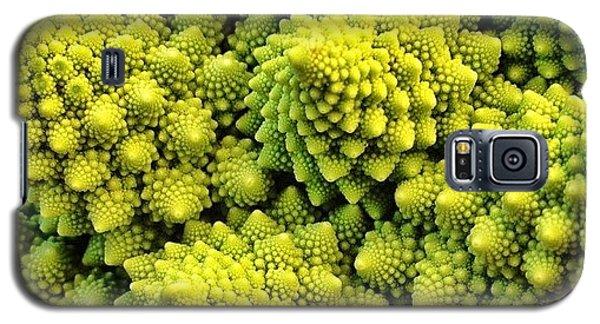 Food And Beverage Galaxy S5 Case - #many_nio by Blenda Studio
