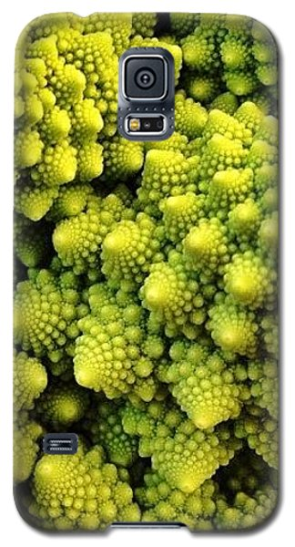 Food And Beverage Galaxy S5 Case - #many_nio by Blenda Studio