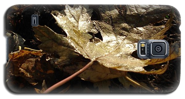 Galaxy S5 Case featuring the photograph Maple Leaf by J L Zarek