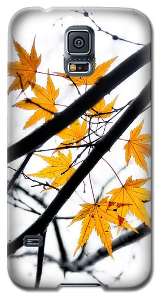 Galaxy S5 Case featuring the photograph Maple Leaves by Jonathan Nguyen