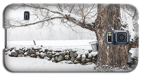 Galaxy S5 Case featuring the photograph Maple Sugaring by Robert Clifford