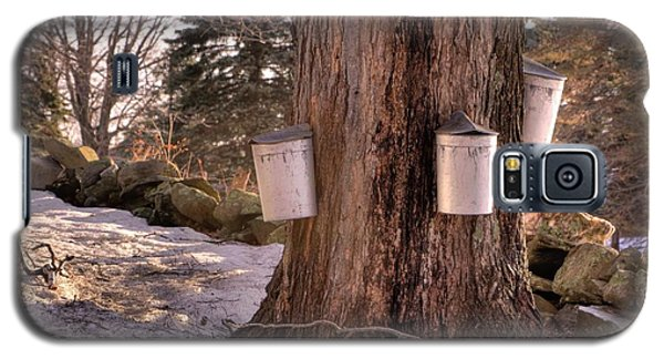 Maple Syrup Buckets Galaxy S5 Case