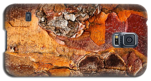 Galaxy S5 Case featuring the photograph Maple Tree Bark by Crystal Hoeveler