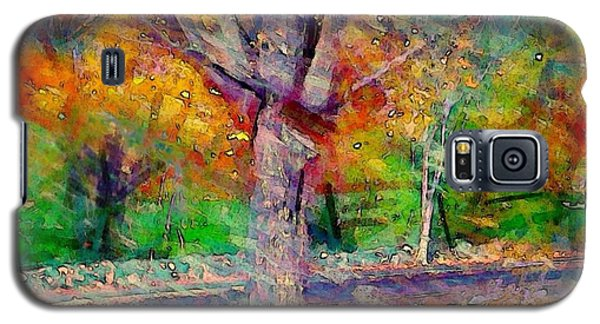 Maple Tree In Autumn - Square Galaxy S5 Case