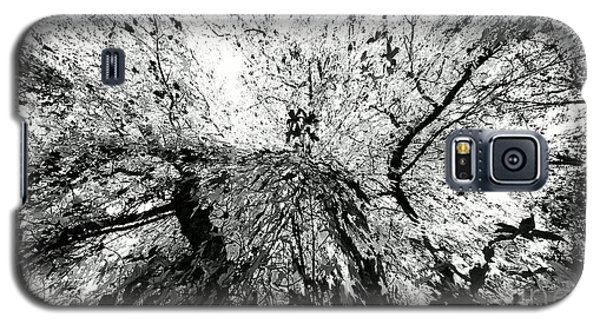 Galaxy S5 Case featuring the photograph Maple Tree Inkblot by CML Brown