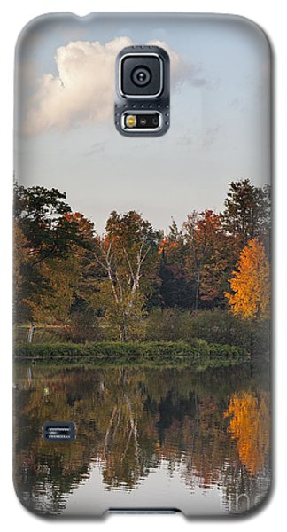 Maple Tree Reflection Galaxy S5 Case