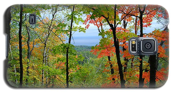 Maples Against Lake Superior - Tettegouche State Park Galaxy S5 Case