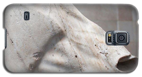 Marble Equus Galaxy S5 Case