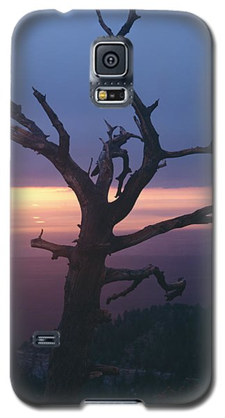 Marble View Snag-v Galaxy S5 Case