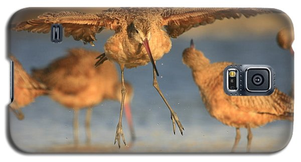 Galaxy S5 Case featuring the photograph Marbled Godwit  by John F Tsumas