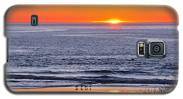 Marbled Godwits Reflecting A Sunset Galaxy S5 Case