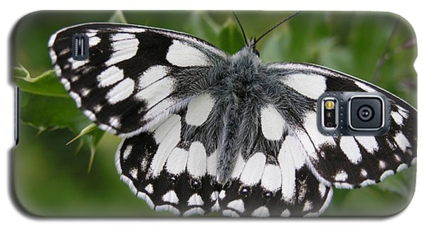 Marbled White Galaxy S5 Case by Ron Harpham