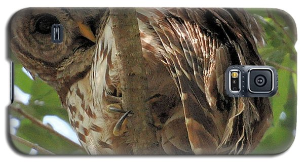 Galaxy S5 Case featuring the photograph Marcus' Backyard Hooter by AnnaJo Vahle