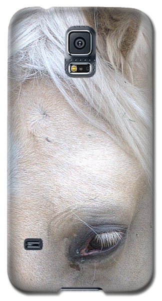 Galaxy S5 Case featuring the photograph Mare2 by Michael Dohnalek