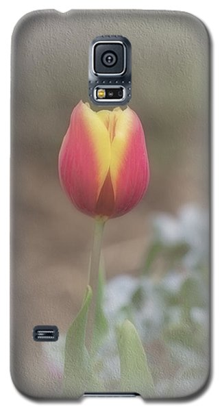 Galaxy S5 Case featuring the photograph Maria by Elaine Teague