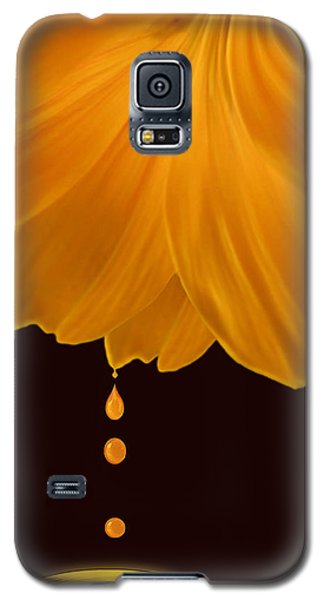 Marigold Factory Galaxy S5 Case by Deborah Smith