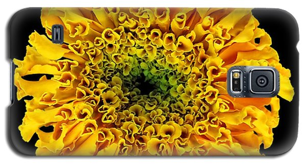 Marigold Galaxy S5 Case