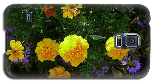 Galaxy S5 Case featuring the photograph Marigolds by Fred Wilson