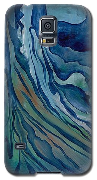 Marina Triptych Galaxy S5 Case