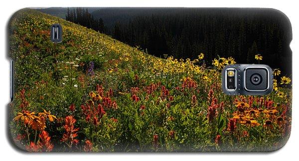 Maroon Bells Wilderness Galaxy S5 Case