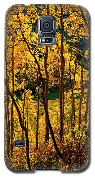 Maroon Lake Gold Galaxy S5 Case