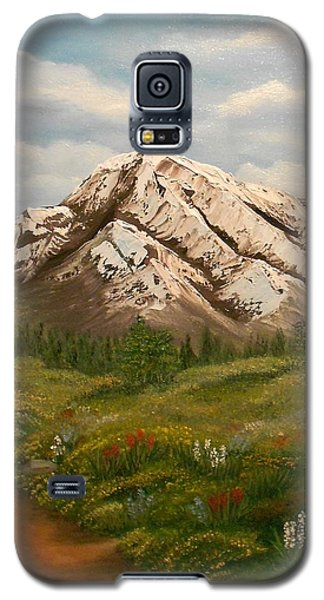 Maroon Trail Splendor Galaxy S5 Case by Sheri Keith