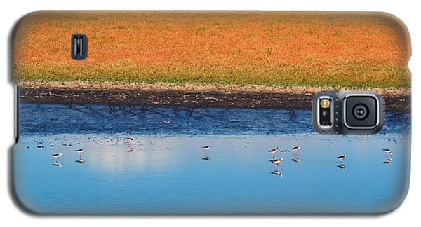 Galaxy S5 Case featuring the photograph Marsh Lands by Cassandra Buckley