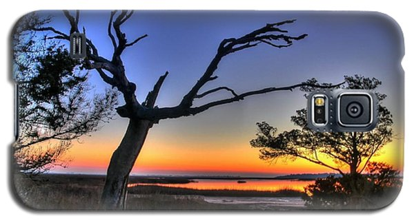 Marsh Tree Sunrise Galaxy S5 Case by Ed Roberts