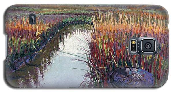 Marsh View Galaxy S5 Case by David Randall